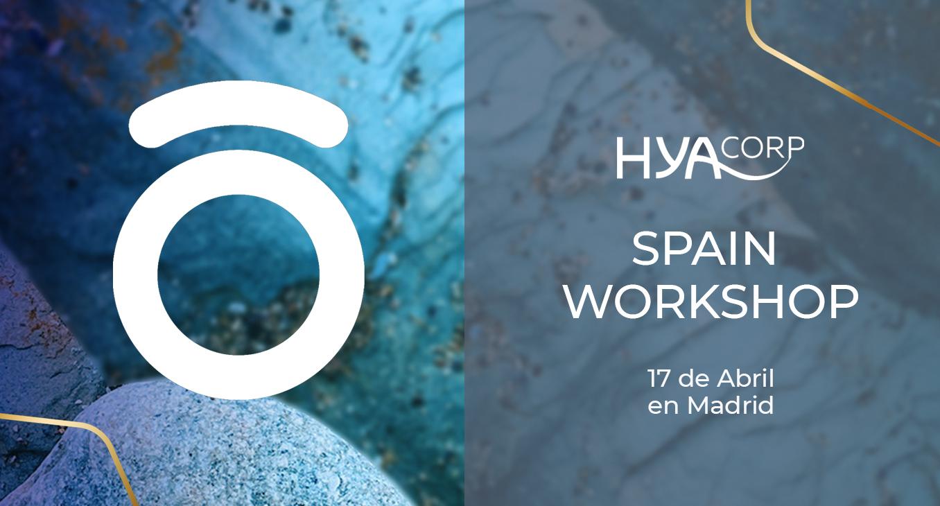 HYAcorp Spain Workshop